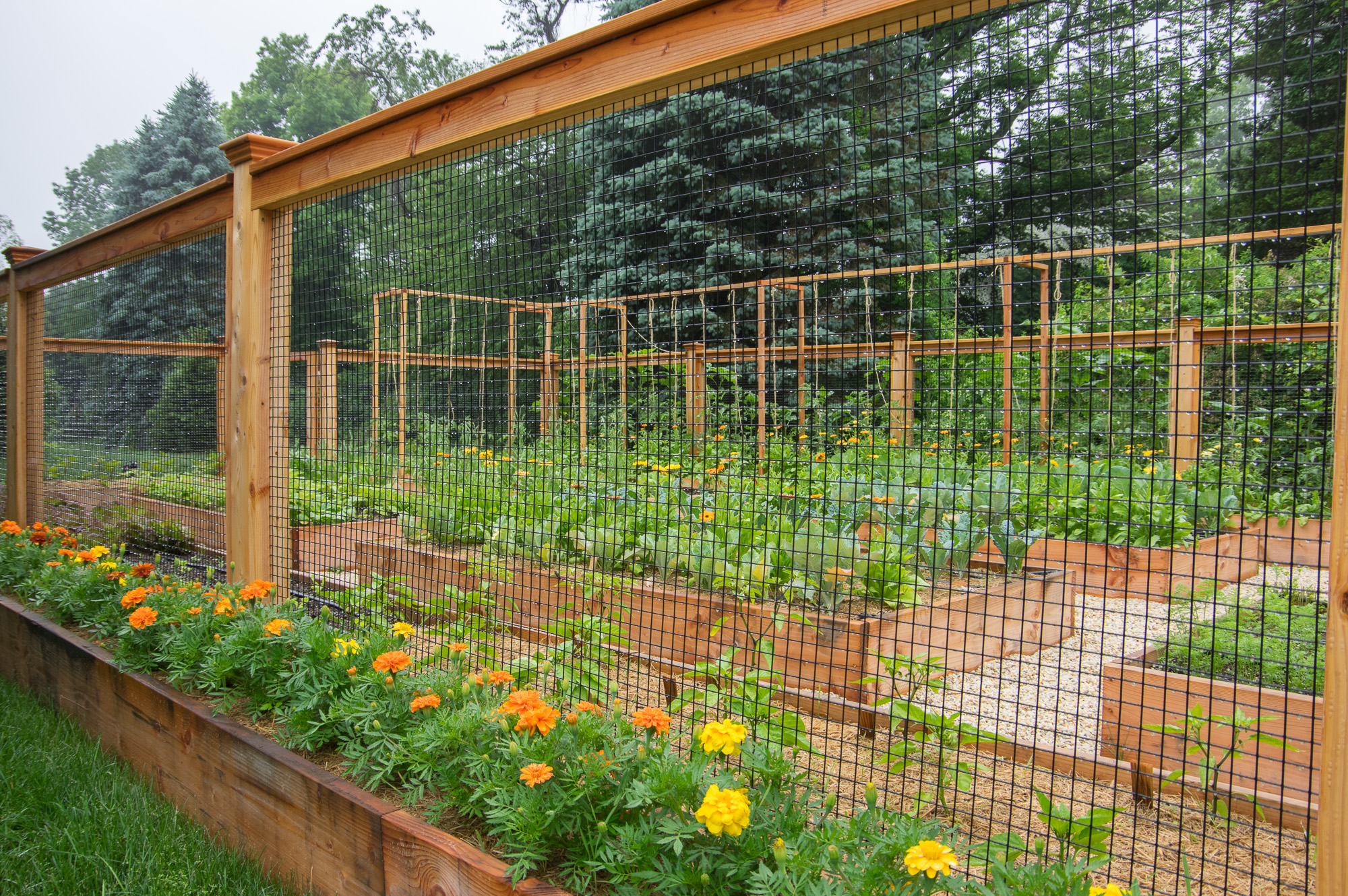 Homefront farmers ridgefield ct organic gardens for Organic garden designs
